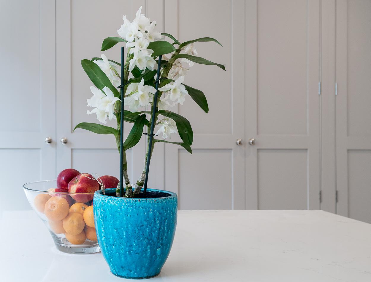 Handmade kitchens direct Christchurch